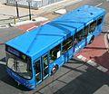 Bluestar 553.JPG