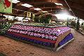 Blumenhalle Wiesmoor msu4.jpg