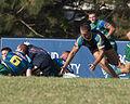 Bond Rugby (13373741953).jpg