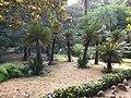 Botanical garden El'Hamma 3.jpg