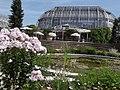 Botanischer Garten - Tropenhaus (Botanical garden - Tropical House) - geo.hlipp.de - 26717.jpg