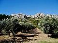 Bouches-Du-Rhone Les Alpilles Rochers D'Entreconque 20102011 - panoramio.jpg
