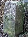 Boundary Stone - geograph.org.uk - 638526.jpg