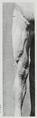 Braus 1921 279.png