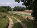 Bridleway near Bloxworth - geograph.org.uk - 568748.jpg