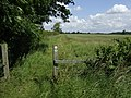 Bridleway to Holland's Green - geograph.org.uk - 473593.jpg