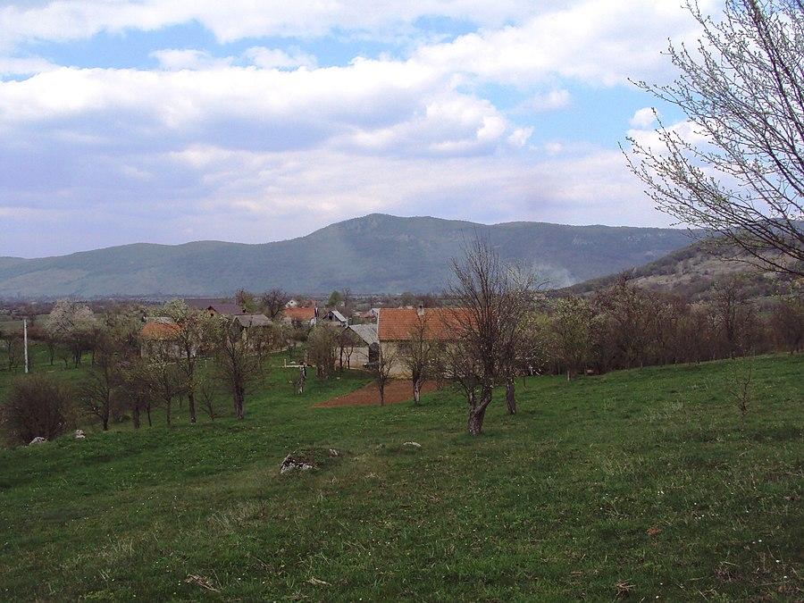 Brloška Dubrava