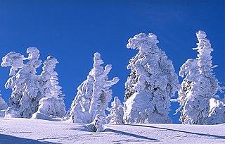 <i>Harzreise im Winter</i>