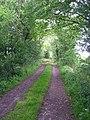 Brook Lane - geograph.org.uk - 1314144.jpg
