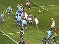 Brumbies vs Bulls, Super Rugby-halfeind, 2013.jpg