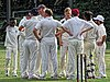 Buckhurst Hill CC v Dodgers CC at Buckhurst Hill, Essex, England 41.jpg