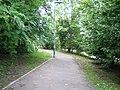 Buffer zone footpath near Moorside - geograph.org.uk - 525443.jpg