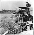 Bundesarchiv Bild 183-57280-0001, Nehlitz, Getreideernte, Mähdrescher.jpg