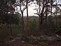Burgh Track - panoramio (15).jpg