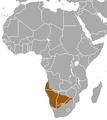 Bushveld Elephant Shrew area.png