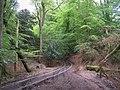 By-way through Franchises Wood - geograph.org.uk - 175999.jpg