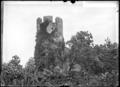 CH-NB - La Tour-de-Peilz, Château, Tour, vue d'ensemble - Collection Max van Berchem - EAD-7557.tif