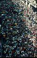 COLLECTIE TROPENMUSEUM De begrafenisstoet voor zanger 'Abd al-Halim Hafez trekt door het centrum van Cairo TMnr 20017681.jpg