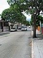 Calle Mayor Cantera (PR-503), en Barrio Sexto, en Ponce, PR, mirando hacia el norte (IMG 3684).jpg