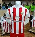 Camiseta U.D. Almería 2020-2021.jpg