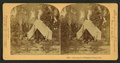 Camping in Palmetto Forest, Florida, by Littleton View Co..png