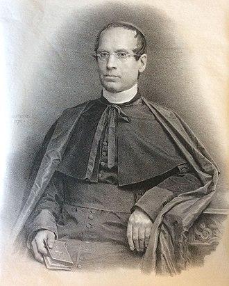 Jean Baptiste François Pitra - Cardinal Pitra in 1871.