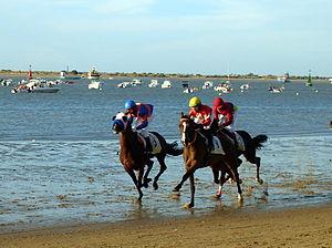 Sanlúcar de Barrameda - Horse racing on the beach in Sanlúcar.