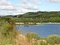 Carron Valley Reservoir - geograph.org.uk - 171369.jpg