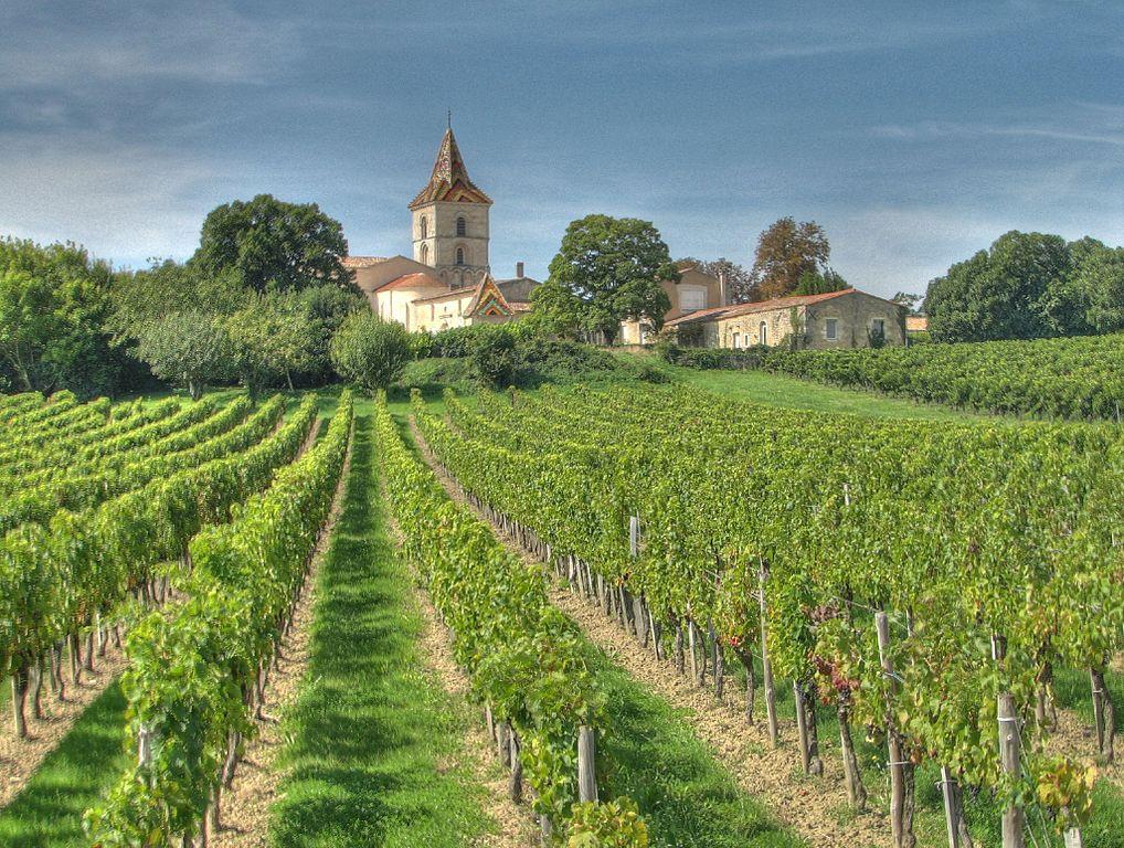 Najslávnejšie vinárske oblasti na svete - Bordeaux