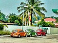 Cars cars cars.jpg
