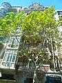 Casa Domènech i Estapà P1330862.JPG