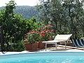 Casa Pool - panoramio.jpg