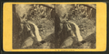 Cascade in the Flume, by Soule, John P., 1827-1904.png