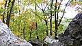 Catoctin Mountain Park-12 (4010607302).jpg