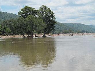 Cauvery Wildlife Sanctuary - Image: Cauvery Wildlife Sanctuary 6