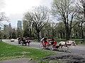Central Park, New York, NY, USA - panoramio (169).jpg