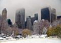 Central Park winter NYC1.jpg