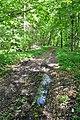 Chahari-Kutkivetski-15056350.jpg