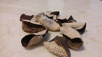 Chenpi - Sun-dried tangerine peels(Chenpi)