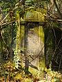 Chenstochov ------- Jewish Cemetery of Czestochowa ------- 140.JPG