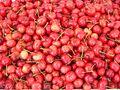 Cherries 1.jpg