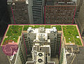 Chicago City Hall green roof edit prospective compare.jpg