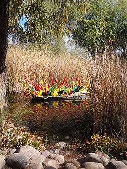 Chihuly in the Desert Botanical Garden - panoramio (5)