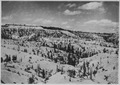 Chinese Wall, center, looking north from Fairy Temple Trail. - NARA - 520258.tif