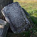 Cieszowa cmentarz żydowski macewa10 21.10.2012 p.jpg
