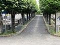 Cimetière Arcueil 8.jpg