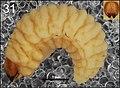 Cleopomiarus medius (10.3897-zookeys.808.28172) Figure 31.jpg