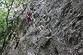 Climbing (4627669528).jpg