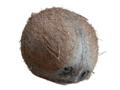 Coconut.xcf