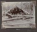 Collectie NMvWereldculturen, RV-A102-1-171, 'Panapi'. Foto- G.M. Versteeg, 1903-1904.jpg